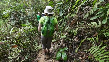 Trek džunglí v okolí Kalaw