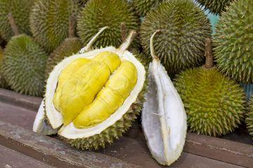 Plod durianu