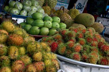 Exotické ovoce - rambutan, mango, jackfruit i durian