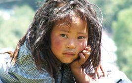 Tibetská dračice v Sikkimu