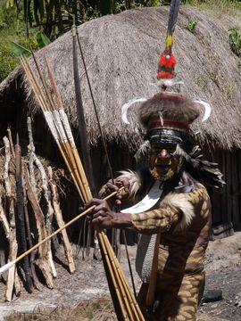 Náčelník danijské vesnice