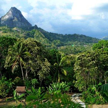 Vrchovina na středním Sulawesi