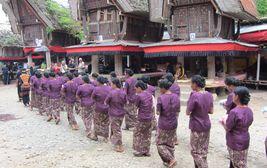 Toradžský pohřeb, Sulawesi