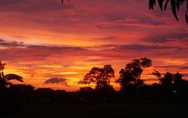 Západ slunce v džungli