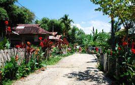 Indonéský venkov