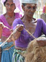 Získávání kokosových vlákem
