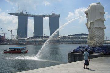 Singapurský lev