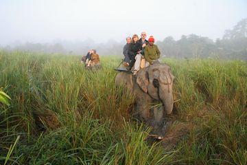 Sloní safari v NP Kazíranga