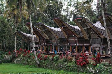 Tongkonany ve vesnici Ke'te Kesu'