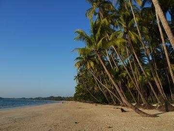 Pláž Ngapali s palmami