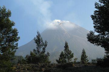 Sopka Merapi, Jáva