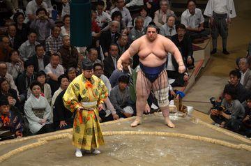 Zápasník sumó