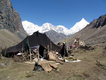 Kočovníci Himálaje
