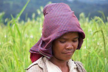 Kambodžan
