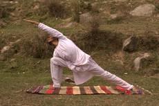 Yoga cvičitel – Promo Tree Top